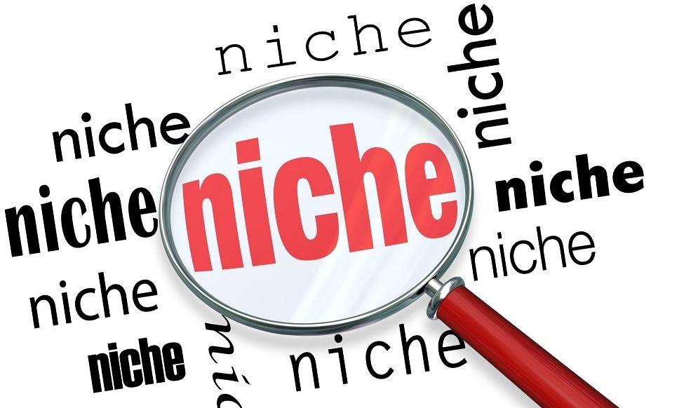 أهم 12 معيار في اختيار النيتش المربح وضمان النجاح لموقعك 100%