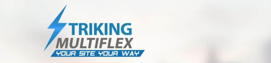 1 – قالبStriking MultiFlex قوالب وورد بريس متعددة الأغراض