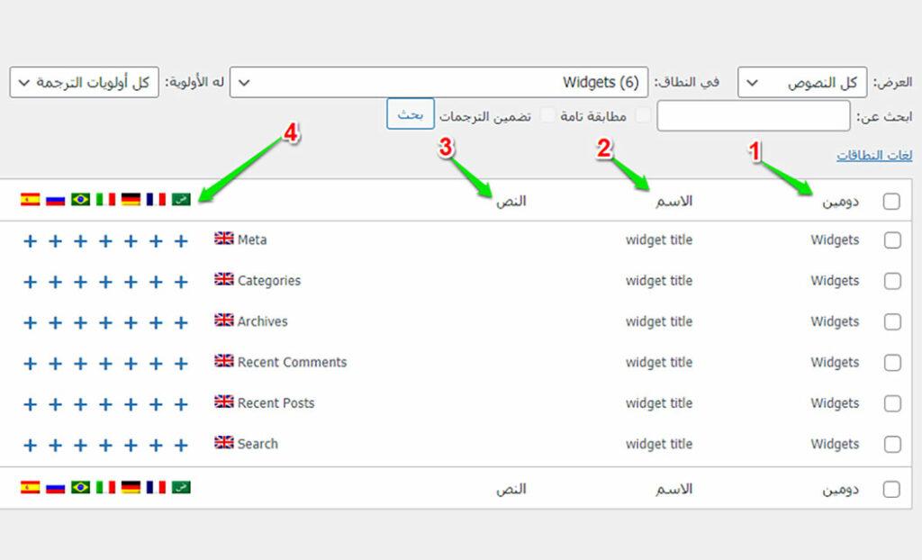 النصوص بواسطة إضافة WPML String Translation