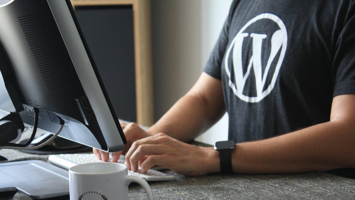 مميزات ووردبريس للمستخدمين والمطورين