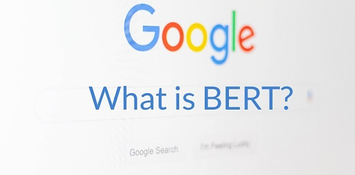 what is google bert